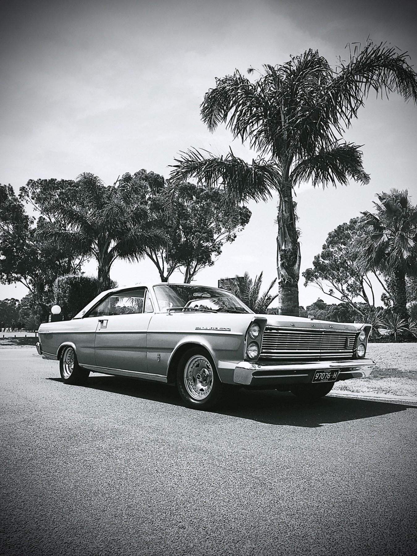 1965 Ford Galaxie 500 LTD