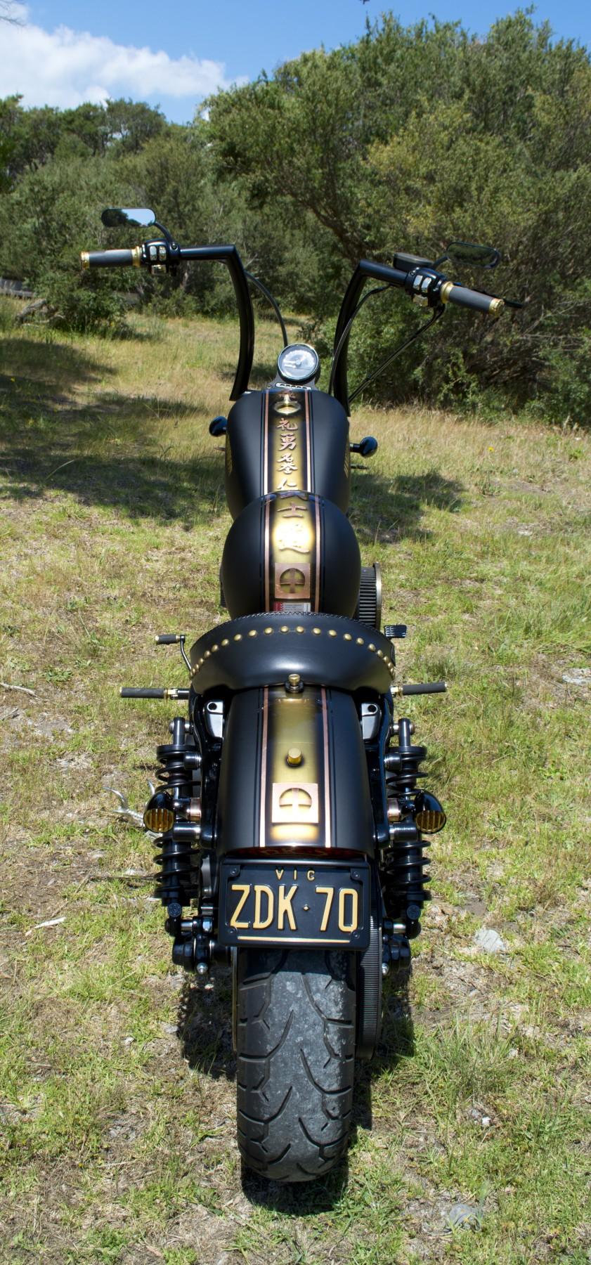 2010 Harley-Davidson Sportster Iron