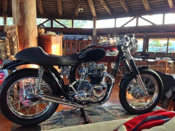 1973 Triumph T140 Bonneville Koowee1 Shannons Club