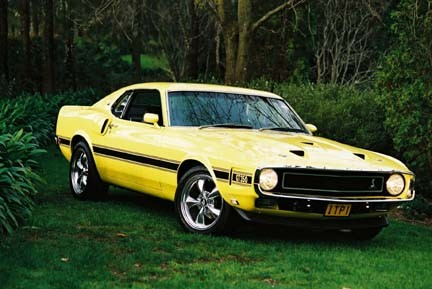 1969 Ford Mustang Shelby Gt350 Johnbaileyitpcomau Shannons Club