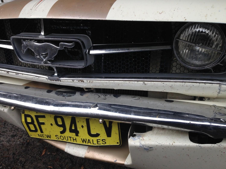 1965 Ford MUSTANG- kangaroo