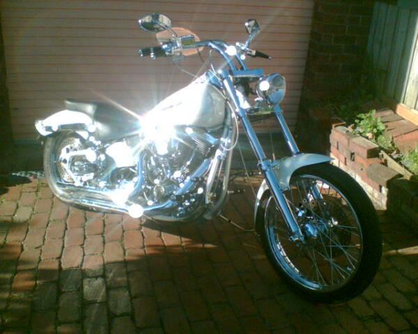 1987 Harley-Davidson fxstc custom softail
