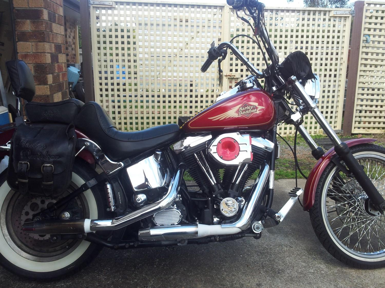 1995 Harley-Davidson 1340cc FXSTC SOFTAIL CUSTOM