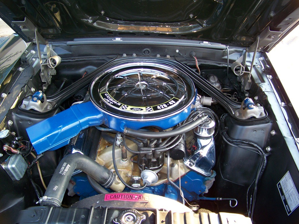 1969 Ford Mustang Mach 1 428 Cobra Jet - Walrus - Shannons Club
