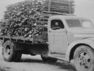 1941 Chevrolet Maple Leaf