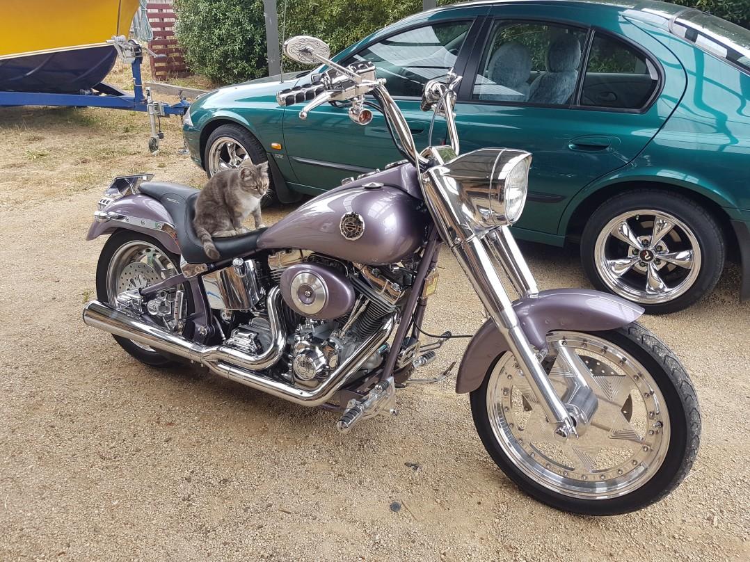 2002 Harley-Davidson 1450cc FXST SOFTAIL