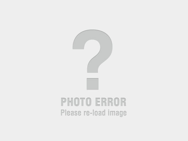 1965 Holden HD
