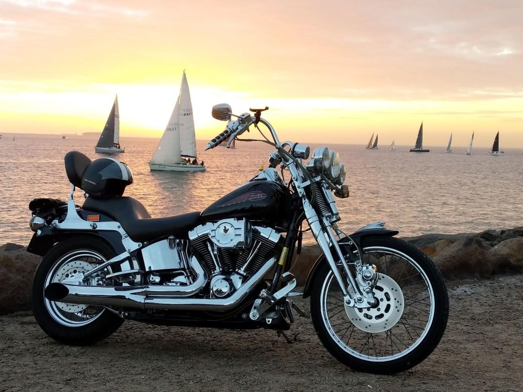 2000 Harley-Davidson 1340cc FXSTS SPRINGER SOFTAIL