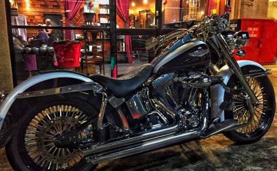 2007 Harley-Davidson FLSTN