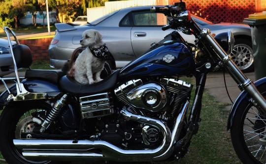 2012 Harley-Davidson FXDWG 103 cubic inch