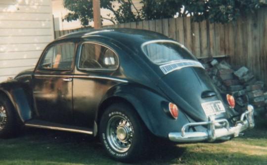 1966 Volkswagen Bug
