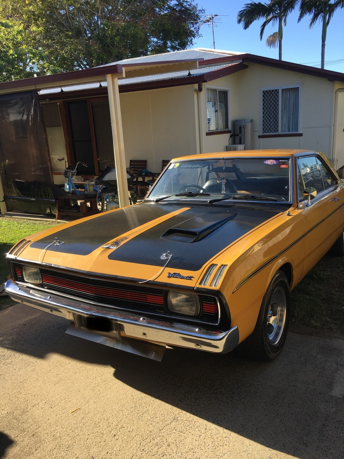 Valiant Pacer Vg,HDPacer