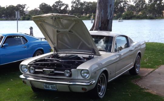 Mustangs at Maughan Thiem Ford Saturday 7/12/13.