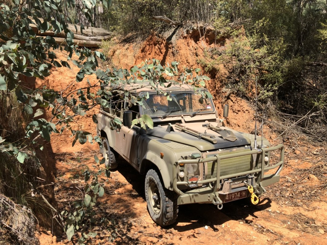 1989 Land Rover ex army 110