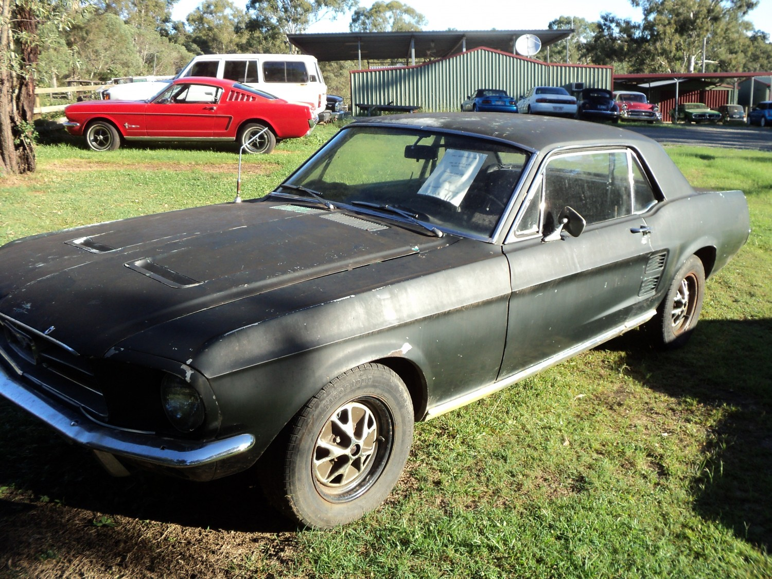 Mustang,1965,Jrs1965,Ford,289/V8