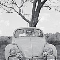 Beetle55