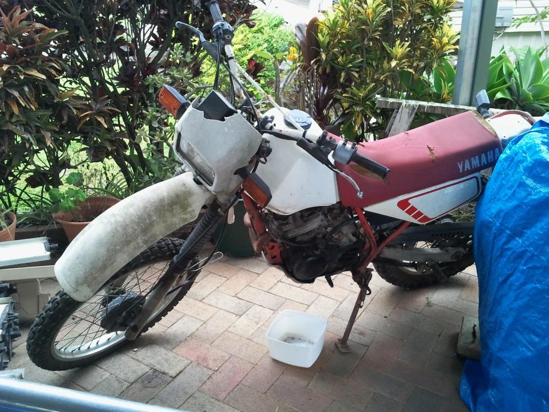 1984 Yamaha xt250tl