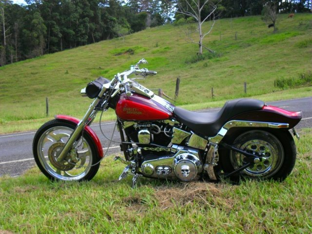 1986 Harley-Davidson 1340cc FXSTC SOFTAIL CUSTOM
