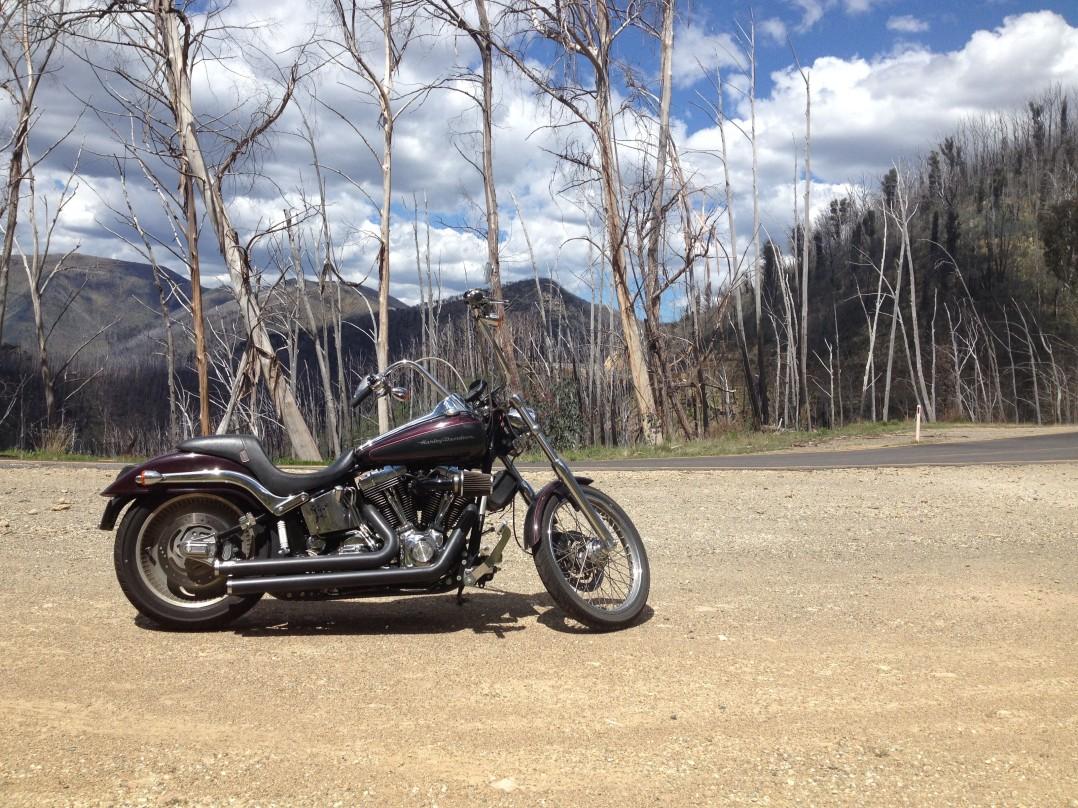 2005 Harley-Davidson 1450cc FXSTDI SOFTAIL DEUCE