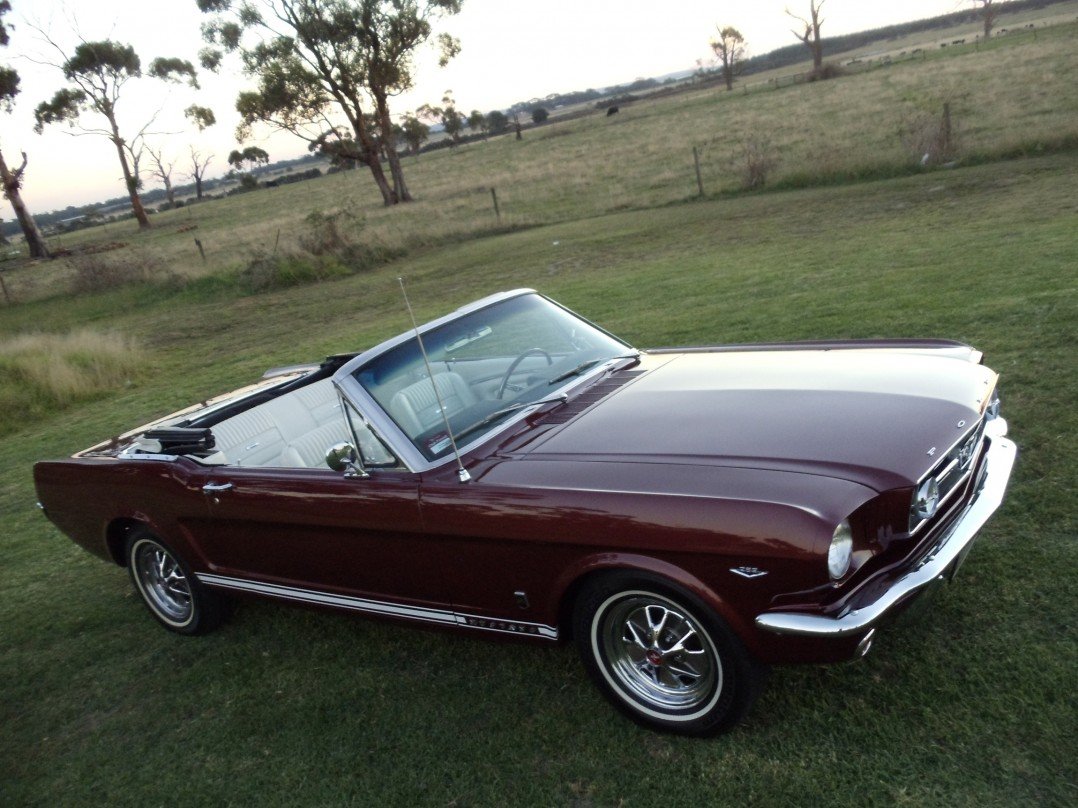 1966 Ford MUSTANG GT FORD