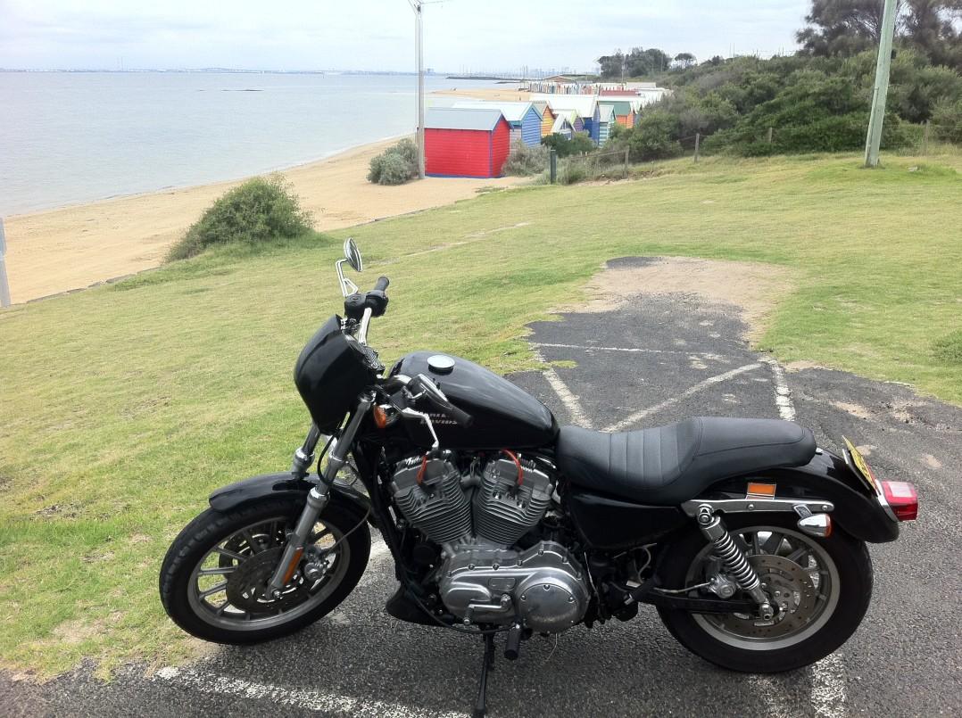 2008 Harley-Davidson 883cc XL883 SPORTSTER